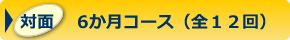 対面6か月コース(全12回)